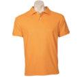 P2100_59_orange 001