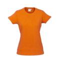 T10022_Orange